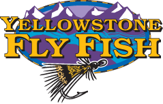 Yellowstone Fly Fish